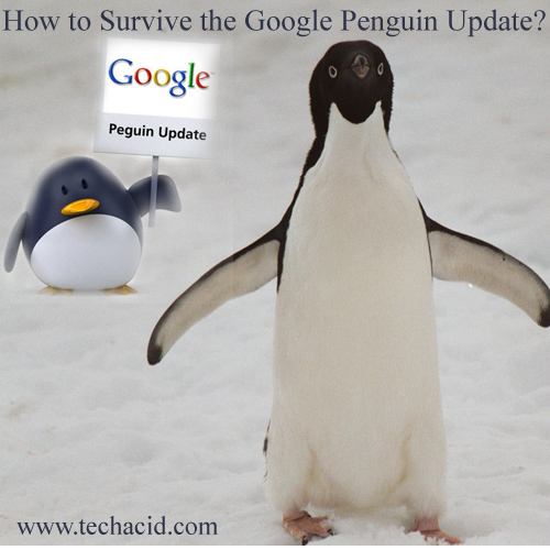 How to Survive the Google Penguin Update?